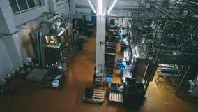 Transportörlinje för hällande mejeriprodukter in i plast-flaskor på en mjölkafabrik i full-HD upplösning i slowmotion A arkivfilmer
