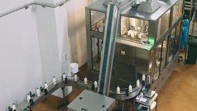 Transportörlinje för hällande mejeriprodukter in i plast-flaskor på en mjölkafabrik i full-HD upplösning i slowmotion A lager videofilmer