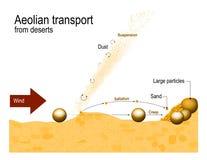 Transport éolien des déserts Processus éoliens illustration de vecteur