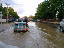 Transport animals to safety through a flooded road with car, eva Royalty Free Stock Photo