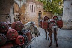 Transport av gasflaskor i medinaen, Fez Royaltyfria Bilder