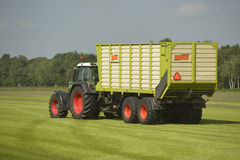 Transport of cut grass with tractor and trailer Stock Photo