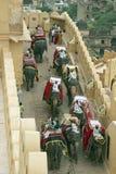Transport d'éléphant Photo libre de droits