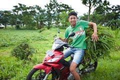 Transport d'herbe Photos libres de droits