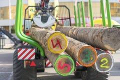 Transport de camion d'astuce de bois de construction scié Le camion transporte des rondins, sur la route Des rondins de coupe son image stock