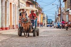Transport de cheval et de chariot au Trinidad Images libres de droits