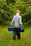 Transport de deux backets des cerises photos libres de droits