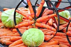 Transport des carottes image stock