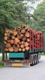 Transport du bois image libre de droits