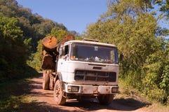 Transport du bois Photos stock