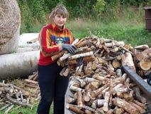 Transport firewood 2 Stock Photography