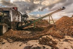 Transport of pine logs in a sawmill for processing and pellet processing stock images