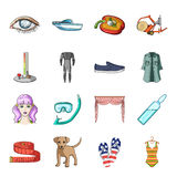 Transport, recreation, animal and other web icon in cartoon style.Medicine, beauty, fashion icons in set collection. Royalty Free Stock Photos