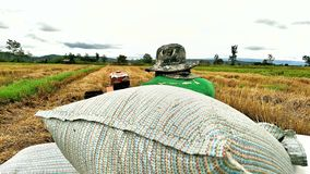 Transport-reis des Landwirts zum Traktor lizenzfreie stockbilder