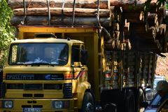 Transport stacked chopped wood logs renewable energy on flat back lorry truck. Transportation stacked chopped wood logs renewable energy on flat back lorry truck stock photos