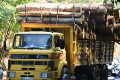 Transport stacked chopped wood logs renewable energy on flat back lorry truck. Transportation stacked chopped wood logs renewable energy on flat back lorry truck stock photography