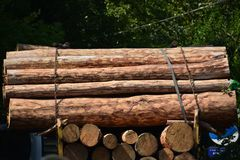 Transport stacked chopped wood logs renewable energy on flat back lorry truck. Transportation stacked chopped wood logs renewable energy on flat back lorry truck stock images
