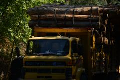Transport stacked chopped wood logs renewable energy on flat back lorry truck. Transportation stacked chopped wood logs renewable energy on flat back lorry truck royalty free stock photography