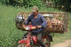 Transportador camboyano imágenes de archivo libres de regalías
