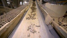 Transportador con el suelo La arcilla pasa a través de transportador en una fábrica de la explotación minera almacen de video