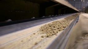 Transportador con el suelo La arcilla pasa a través de transportador en una fábrica de la explotación minera almacen de metraje de vídeo