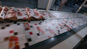 Transportador en la planta para la producci?n de papel pintado F?brica moderna Proceso de fabricaci?n del papel pintado metrajes