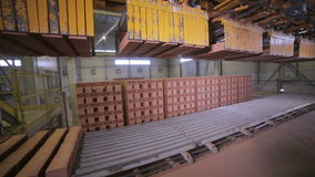 Transportador que trabaja en una fábrica, mercancías de junta, ladrillos del robot industrial