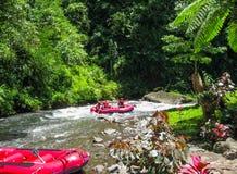 Transportando en balsa en el barranco en el río de la montaña de Balis, Indonesia Imágenes de archivo libres de regalías