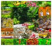 Transportando na garganta no rio da montanha de Balis, Indonésia Imagens de Stock Royalty Free