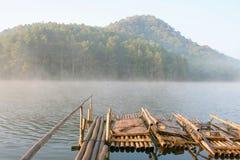 Transportar de bambu Fotografia de Stock