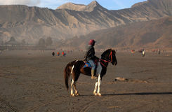 Transportation in Bromo mountain. Bromo mountain tourism destination in east java, indonesia Stock Photography