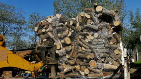 Transportation of firewood. Loading prepared firewood with forklift into the truck trailer,video clip stock footage