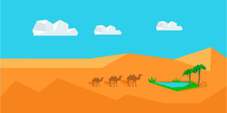 Transportation Goods by Camel. Worldwide Warehouse Stock Images