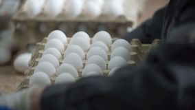Female hands sorting eggs in the factory. Transportation and industrial plant selection for egg stock video footage