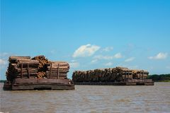 Transportation of industrial wood Stock Photo