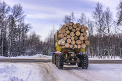 Transportation of logs on truck on forest road in winter Stock Image