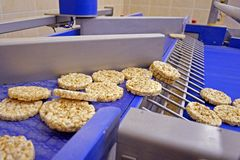 Transportation from one process to another on food production line. Modern equipment food industry. royalty free stock photos
