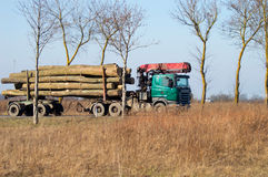 Transportation of timber. Delivery truck with oak on the road Royalty Free Stock Image