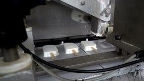 Transportband automatische lijnen voor de productie van roomijs stock footage
