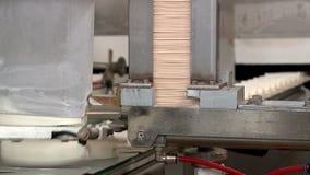 Transportband in de eskimo en roomijsfabriek in verrichting stock videobeelden