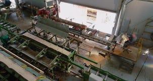 Transportbandlijn bij een algemeen plan van de houtbewerkingsfabriek, het werk proces in een zaagmolenworkshop stock video