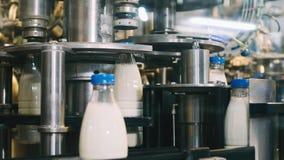 Transportbandlijn voor het gieten van zuivelproducten in plastic flessen bij een melkfabriek in resolutie volledig-HD in slowmoti stock video