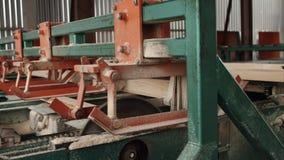Transportbandlijn voor houtverwerking Zagend hout op raad op zaagmolen stock video