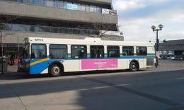 Transportbuss Fotografering för Bildbyråer