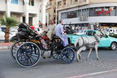 Transporte com cavalos Fotos de Stock Royalty Free