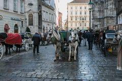 Transporte com cavalos e motorista em clientes de espera de Viena fotografia de stock