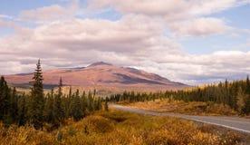 Transporte da estrada da montanha de Autumn Drive Fall Colors Alaska fotografia de stock royalty free