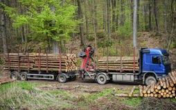 Transporte da madeira serrada imagens de stock