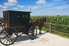 Transporte de Amish foto de stock royalty free