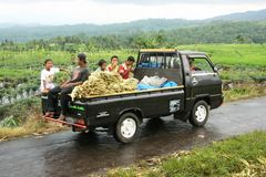 Transporte de la cosecha Fotos de archivo